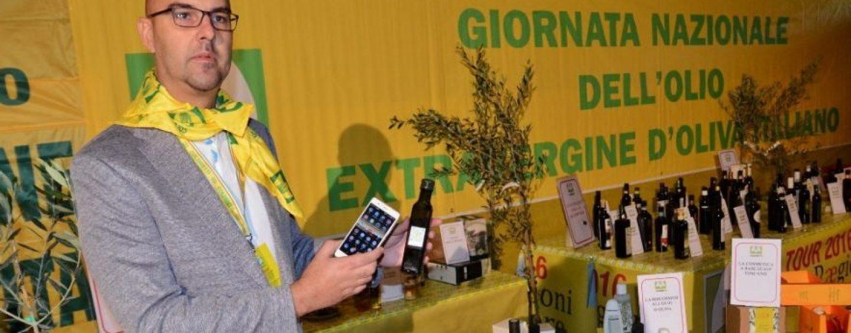 Coldiretti: 2016 anno funesto per la produzione di olio d'oliva