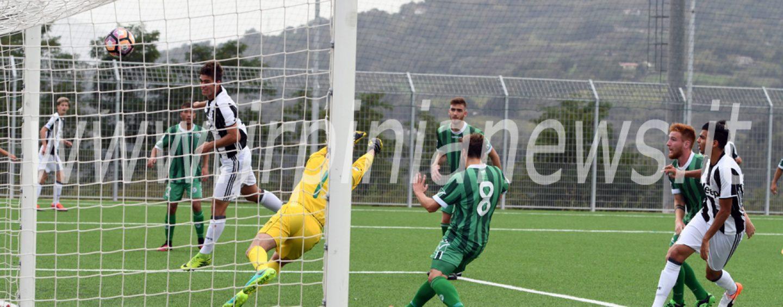 Avellino Calcio – Settore giovanile, si volta pagina: ecco il nuovo corso