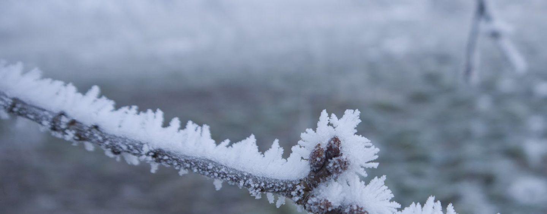FOTO/ Meteo, Irpinia morsa dal gelo: le previsioni