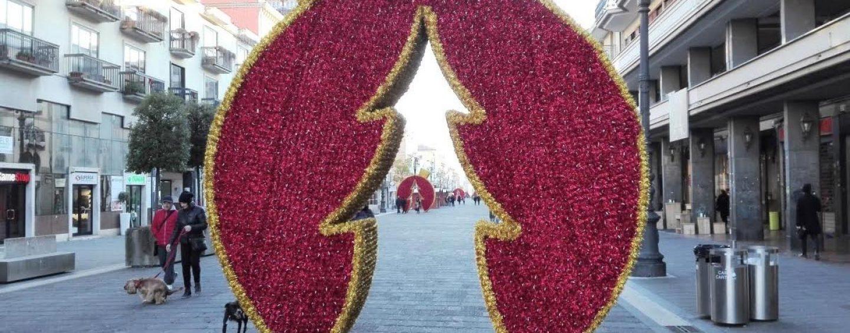 31 casette e la casa di Babbo Natale, finalmente è Natale ad Avellino