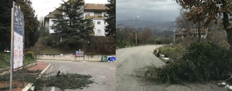 FOTO/ Alberi in strada, disagi in Irpinia a causa del forte vento