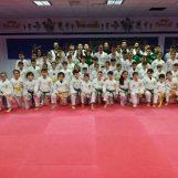Asd Taekwondo Avellino, grande festa per le nuove cinture colorate