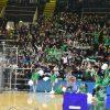 Sidigas Avellino-Juventus Utena, la fotogallery