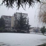 Neve-Solofra