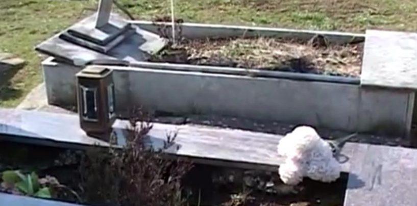 Raid nel cimitero di Montoro, furti e atti vandalici