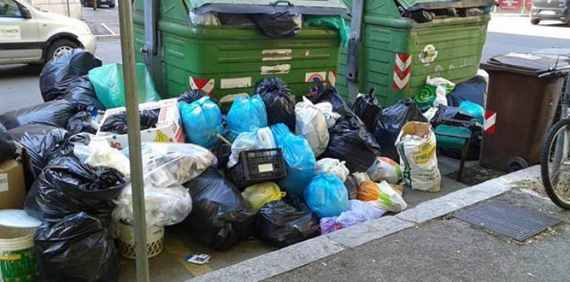 """Stop raccolta umido, Tropeano: """"Non conferite i rifiuti in luoghi pubblici"""""""