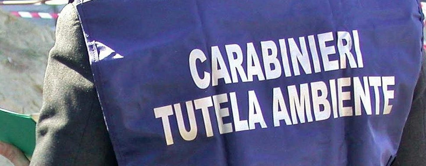Reati ambientali: task-force dell'Arma in Irpinia, sequestrate intere aree