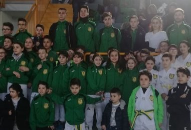 Asd Taekwondo Avellino, stage di combattimento al Palasport di Grottolella