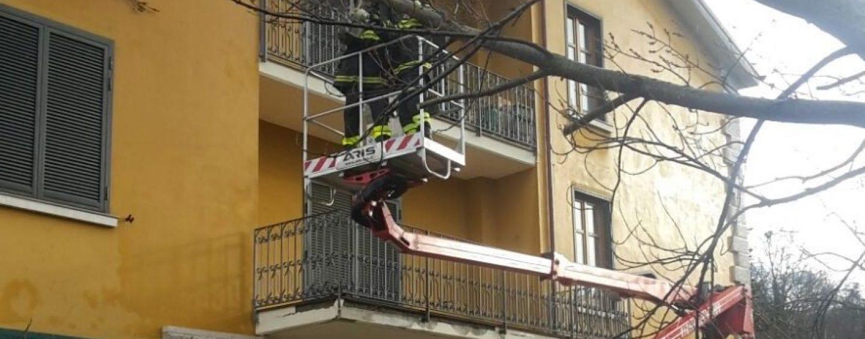 Manocalzati, albero precipita sulla facciata di un edificio: intervengono i Vdf