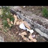 VIDEO/ E dopo i fuochi d'artificio a San Felice resta solo tanta sporcizia