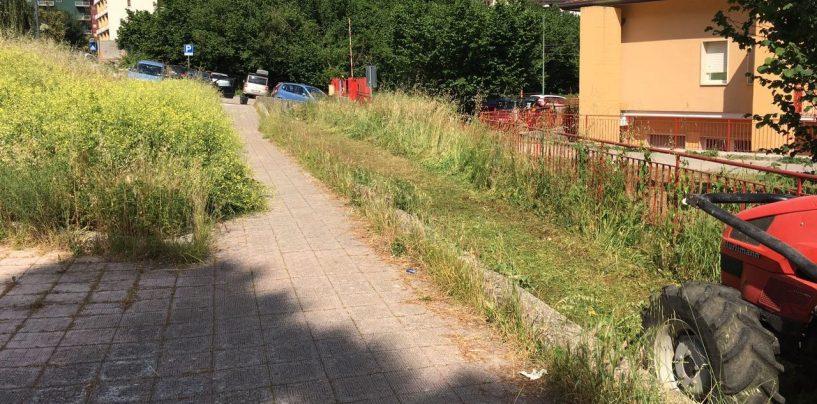 FOTO/ Il miracolo di Santa Rita: derattizzazione e pulizia delle aree verdi, primi segnali dal Comune di Avellino