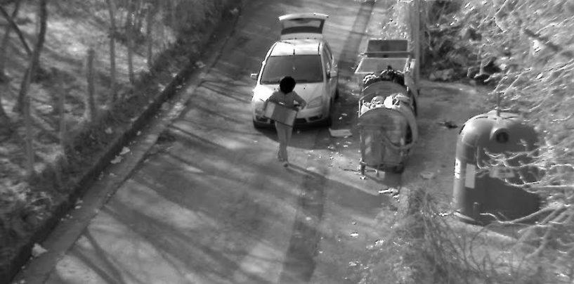 Avellino, abbandona un acquario per strada: scatta la multa