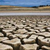 Siccità in Campania, la Regione chiede lo stato di calamità