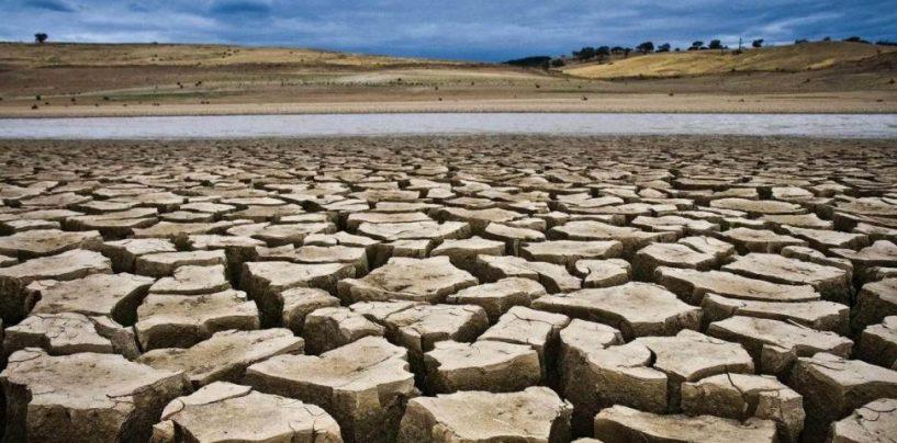 """Montella, emergenza siccità: """"Allevatori disperati"""""""