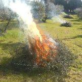 Bruciava sterpaglie e residui vegetali: denunciato 60enne