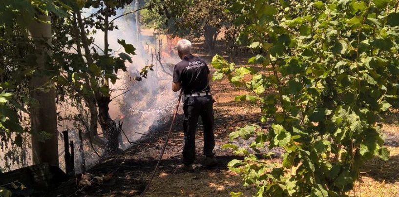 La Polizia Municipale doma incendio in città, in attesa dei caschi rossi