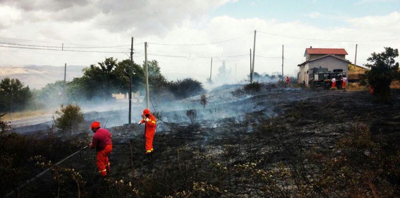 Ancora fiamme in Irpinia: sono 5 i roghi attivi, situazione preoccupante a Caposele