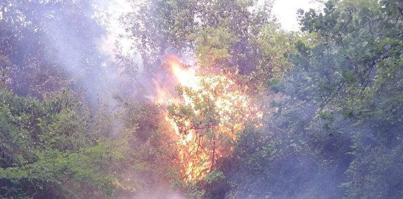 Incendi: la mappa dei roghi, fiamme a ridosso della linea ferroviaria
