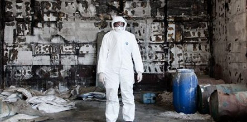 """""""Raccoglievamo polvere d'amianto con delle scope"""". Processo Isochimica, parola ai teste"""