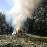 Appiccano il fuoco alle sterpaglie nonostante i divieti: cinque agricoltori nei guai