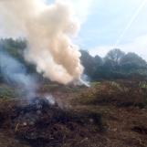 Roghi, nei guai altri tre agricoltori in provincia di Avellino