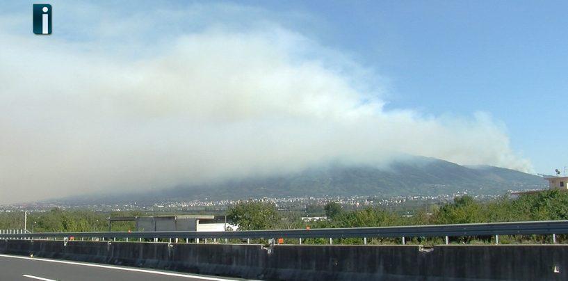 Il Vesuvio brucia, gli incendi sarebbero dolosi: arrestato il primo piromane