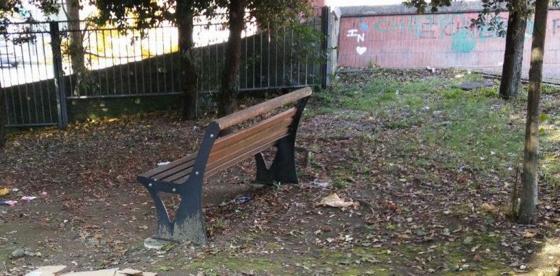 """""""Più verde e meno cemento in città"""": il Consiglio stabilisce la nuova linea"""