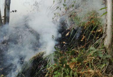 Emergenza incendi, fermati due piromani a Monteforte e Forino