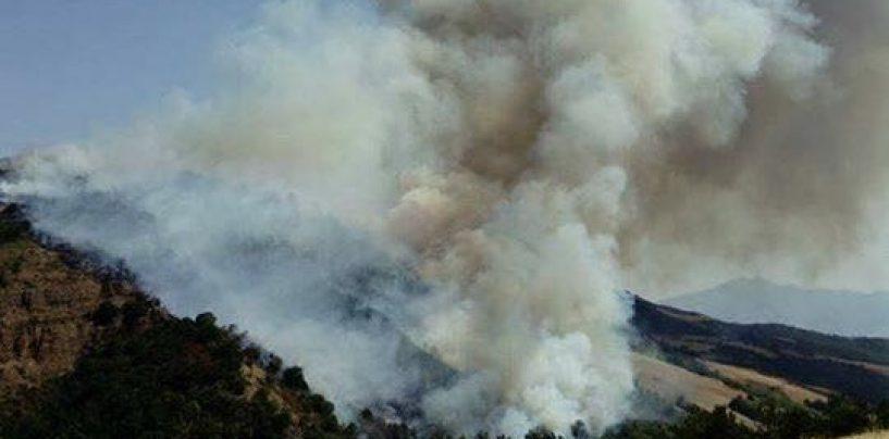 Ariano, ordinanza del Comune contro il pericolo incendi