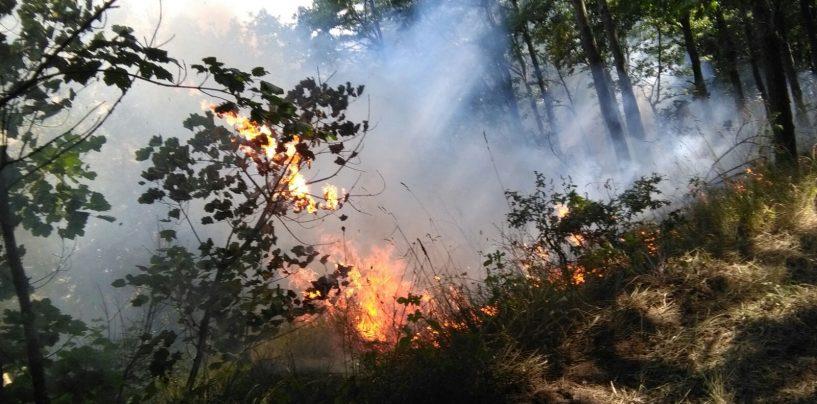 FOTO/ Il fuoco non da tregua all'Irpinia: 20 gli incendi odierni, 80 gli operatori coinvolti