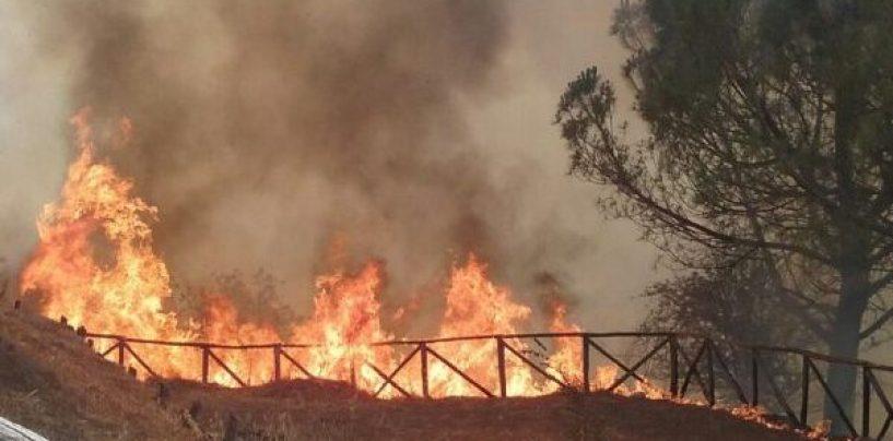 Incendi, l'Irpinia brucia: a Lapio le fiamme lambiscono le case