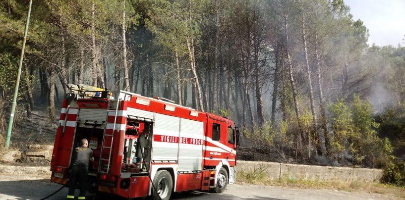 Cervinara, fiamme e fumo nero: aria irrespirabile per ore