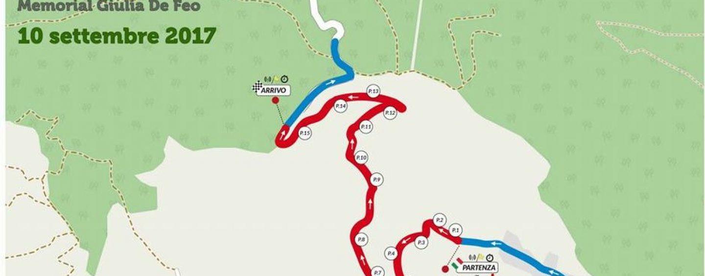 Automobilismo irpino: si scaldano i motori per il 1^ Slalom Città di Forino