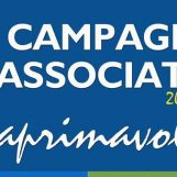 Athletic Grottolella, parte domani la campagna associativa
