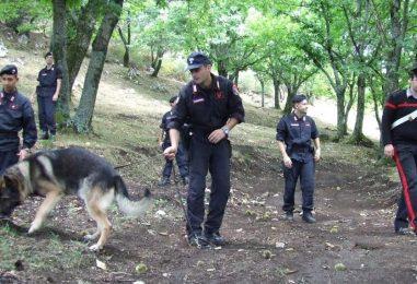 Come non perdersi in montagna: consigli utili dei carabinieri
