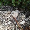 Maltempo: fango e allagamenti a Montoro, la situazione
