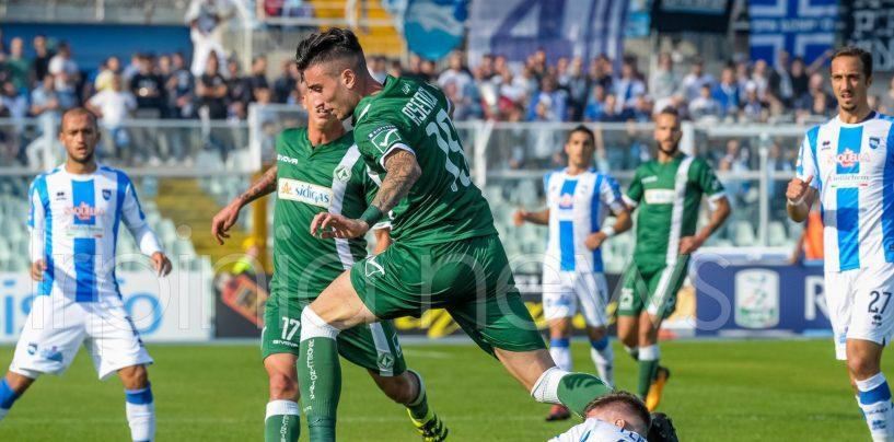 Virtus Entella-Avellino 1-1, le pagelle