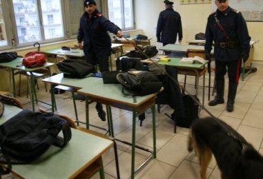 Droga nelle scuole, controlli dei Carabinieri con unità cinofile