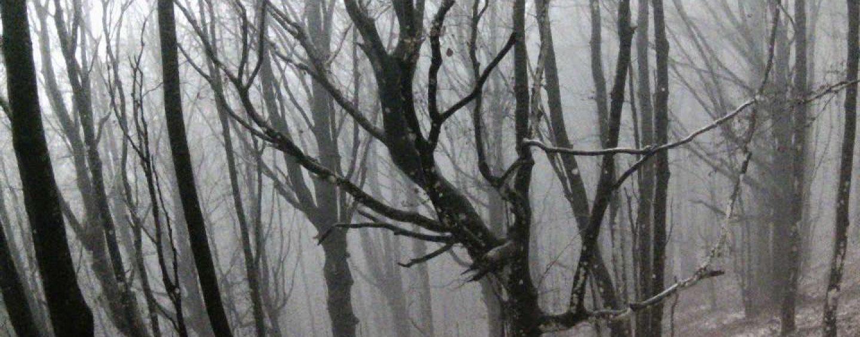 L'inverno incombe sull'Irpinia: prima nevicata sul Partenio