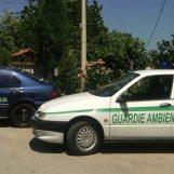 Pastore tedesco impaurito dai fuochi in provincia di Avellino: ritrovato dalla Gadit