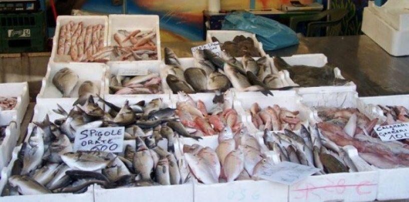 Cenone di Natale sicuro, sequestrati 150 kg di prodotti ittici