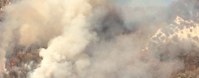 Prevenzione incendi: 45 milioni dalla Regione