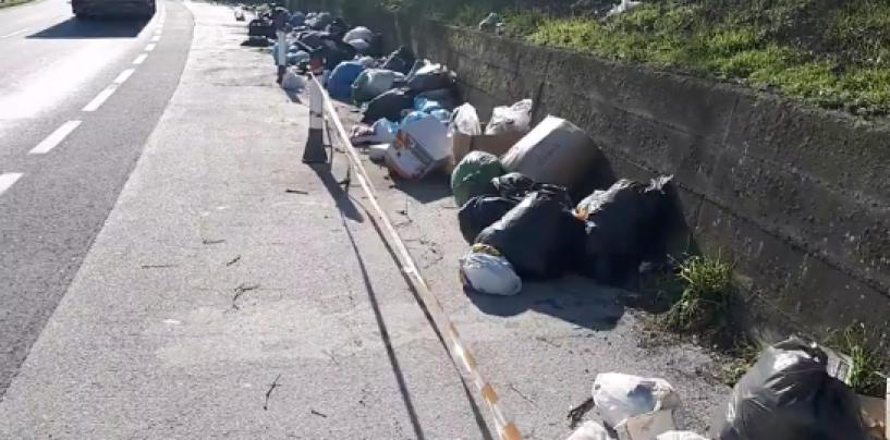 Contrasto all'abbandono dei rifiuti, la Gadit sempre più presente sul territorio