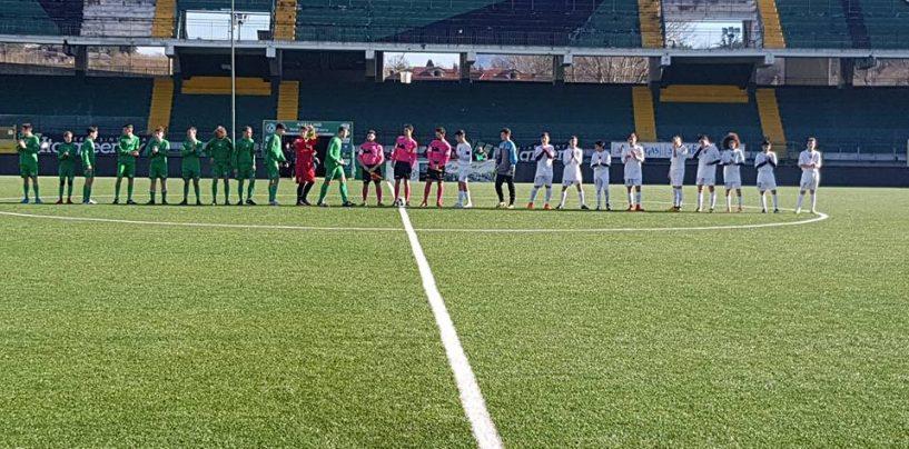 Terra d'Irpinia, al Partenio si gioca la seconda edizione del trofeo per giovanissimi