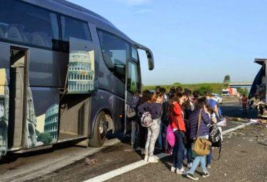 In gita scolastica con autista non in regola, la Stradale sospende ditta di autobus