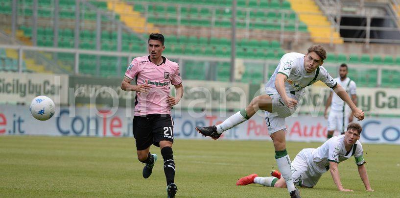 Avellino Calcio – Mercato, Wilmots in uscita per fare cassa