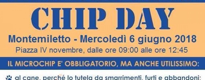 """A Montemiletto il """"Chip Day"""": applicazioni gratuite del microchip agli animali"""