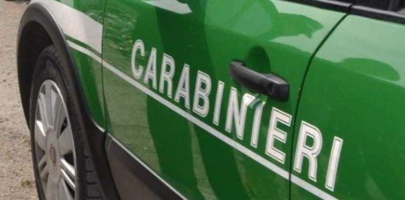 Abusivismo edilizio, i carabinieri forestali denunciano due persone
