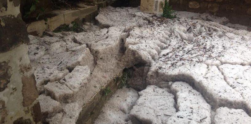 """Grandine sul Sannio, Campagnuolo (FI): """"Subito stato di calamità naturale"""""""