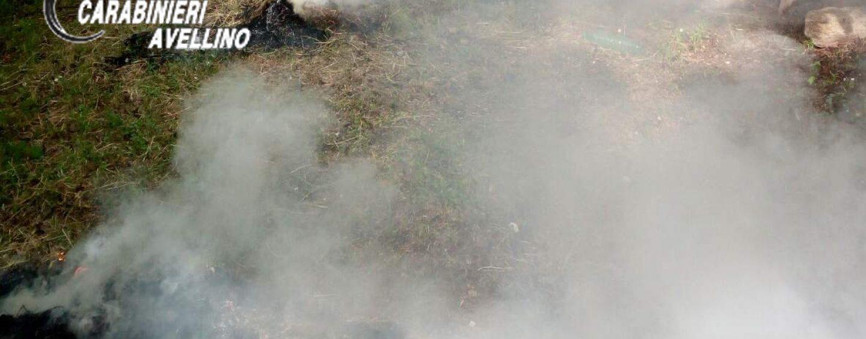 Roghi, agricoltore denunciato per aver bruciato residui vegetali
